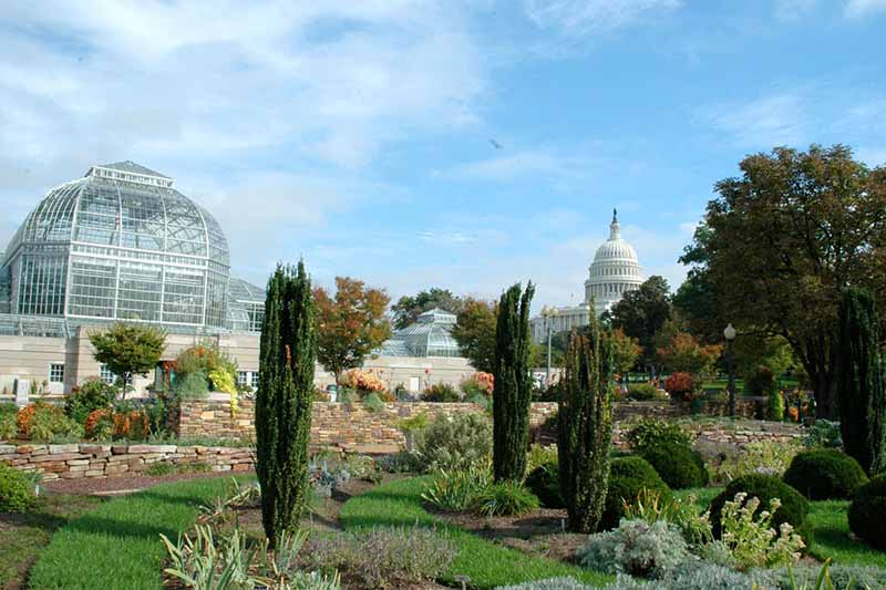 Ten Must See Sights in Washington DC - US National Zoological Park and US Botanic Gardens
